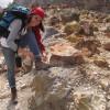 Pengunjung Asing Kagumi Kaldera Gunungapi Papandayan Garut