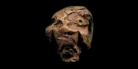 Rekonstruksi wajah Denisovan | Devian Art