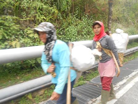 Ilustrasi, Penduduk Seputar Potensi Geothermal di Pasirwangi, Masih Banyak Berprofesi Buruh Tani. (Foto : John).