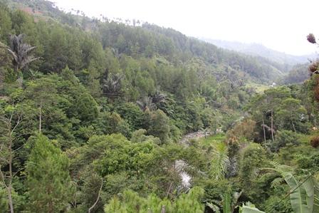 Sungai Lintasi Dasar Gunung Gelap.
