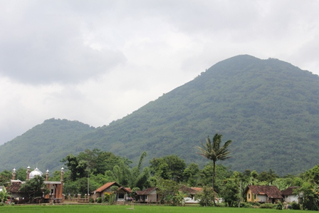 Ilustrasi. Sawah dan Gunung. (Foto: John Doddy Hidayat).