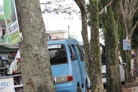 Ilustrasi. Iklan Politikus Penjaga Pohon. (Foto: John Doddy Hidayat).