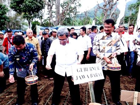 Gubernur Jabar, Didampingi Bupati dan Wakil Bupati Garut, Lakukan Komando Percepatan Tanam Kedelai MT 2014 di Garut, Kamis (27/03-2014). Foto: John Doddy Hidayat.