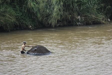 Ilustrasi. Kemiskinan Jadikan Keberanian Menambang Pasir di Sungai Cimanuk, yang Sarat Resiko Kecelakaan. (Foto: John Doddy Hidayat).