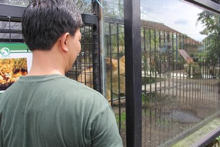 Rudy Arifin Asyik Bercanda Dengan Singa Afrika.