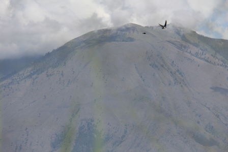 Pesona Puncak Gunungapi Guntur, Berketinggian 2.249 mdpl.