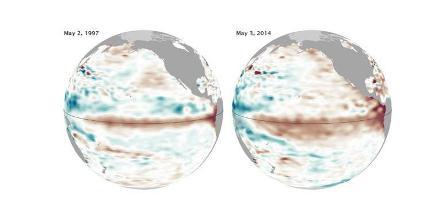 Peta menunjukkan perkembangan El Nino 1997 (kiri), dan 2014 (kanan). Arsiran kecoklatan menunjukkan wilayah dengan perairan lebih hangat, dan muka air laut lebih tinggi. Warna kebiruan menunjukkan perairan lebih dingin. Warna putih menunjukkan perairan dengan suhu normal. (NASA).