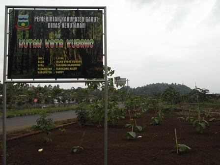 Hutan Kota pada Lintasan Jalan Alternatif Kubang - Banyuresmi.