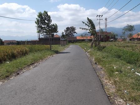 Lintasan Ruas Badan Jalan Kampung Panawuan, Meski Berstatus Kelurahan, Tetapi Langka Peroleh Kepedulian Pemkab Setempat.