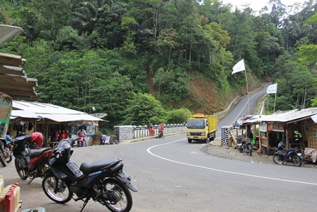 Kondisi Lintasan Jalan Selatan Garut, Jauh Lebih Baik Daripada Daripada Jalan Kabupaten. (Foto: John Doddy Hidayat).