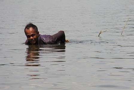Kembali Siap Menyelam Sambil Menyasar Ikan Melintas di bawah Permukaan Air.