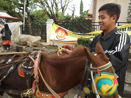 Kusir Delman, Santai Mencukur Rambut Kuda. (Foto : John Doddy Hidayat).