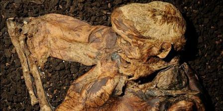 Kondisi mayat berusia 2.000 tahun ini masih utuh karena terendam dalam rawa-rawa gambut. (MANCHESTER MUSEUM).