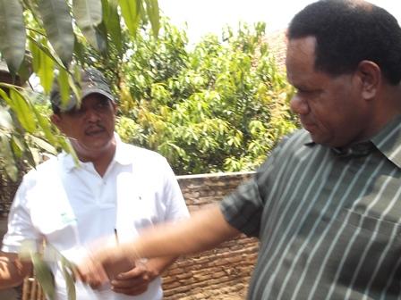 Menteri Lingkungan Hidup Amati Pertumbuhan Kayu Gaharu di Kampung Sarleuleus, Kini Populasinya Mencapai 500 Pohon Lebih, Sedangkan Bibitnya Dari Ternate Maluku Utara.
