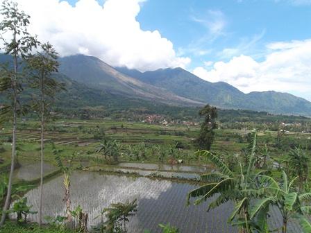 Pemukiman Penduduk dan Areal Persawahan Pada Bibir Lereng Gunungapi Guntur.