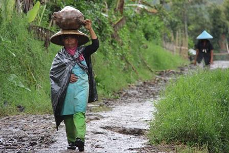 Ilustrasi. Petani Perempuan Pulang Berkebun di Cikajang, Garut, Jabar. (Foto : John Doddy Hidayat).