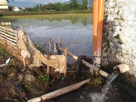 Air Dari Pemandian Dialirkan ke Kolam dan Sawah.