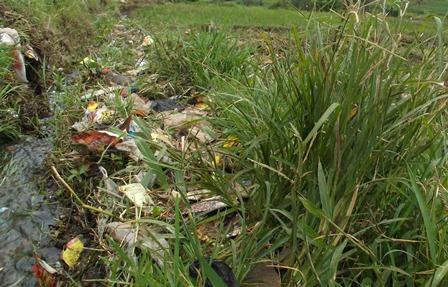 Sampah Plastik Kian Mengepung dan Mencemari Areal Perswahan di Garut, Jawa Barat.