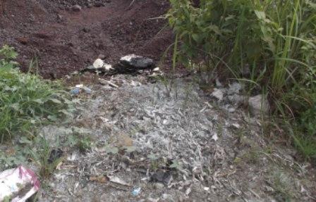 Lingkungan Menjadi Tercemar, Juga Bau Busuk Sangat Menyengat Hidung.