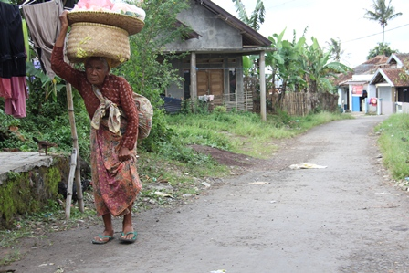 Ilustrasi. Pedagang Keliling Bakul Sayuran Ini, Nyaris Tak Pernah Merasakan Pertumbuhan Ekonomi. (Foto : John Doddy Hidayat).