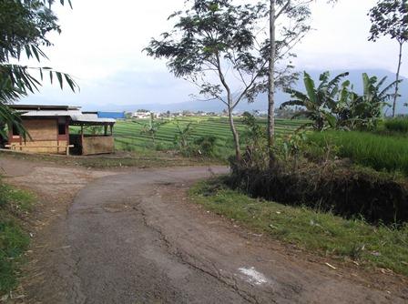 Wajah Desa Padamukti Kecamatan Pasirwangi.
