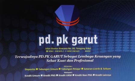 pdpk11