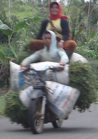 Ditengah Kesulitan Rakyat Menjerit Memenuhi Kebutuhan Pokok. (Foto : John Doddy Hidayat).