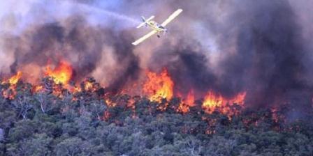 Kebakaran hutan tahun ini sudah melanda beberapa kawasan di negara bagian Victoria, Australia. (ABC).