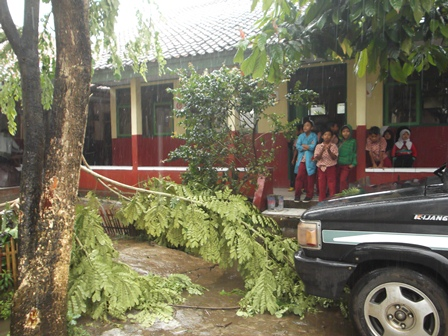 Ilustrasi. Hujan Angin Rubuhkan Pohon Depan Kelas. (Foto: John Doddy Hidayat).