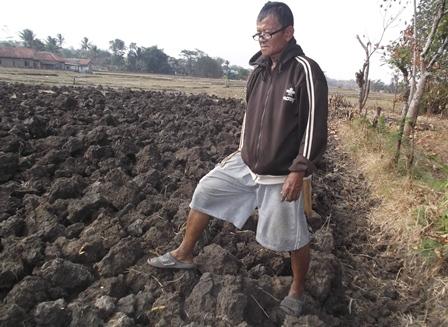Semakin Mengeringnya Bongkahan Tanah.