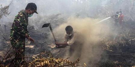 Warga dan tentara berupaya memadamkan kebakaran lahan ladang di Rimbo Panjang, Provinsi Riau, 6 September 2015. Kebakaran hutan disebabkan oleh pembersihan lahan secara ilegal di Sumatera dan kalimantan. (AP PHOTO).
