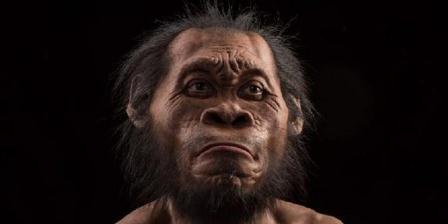 Homo naledi. (National Geographic).