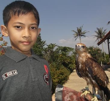 Elang Taman satwa Cikembulan Juga Bisa Bersahabat Dengan Anak-anak.