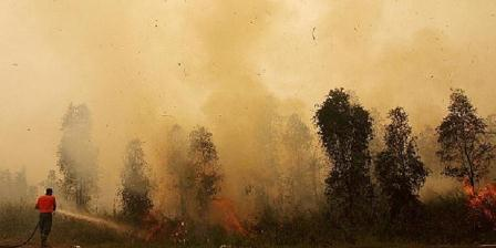Petugas pemadam kebakaran memadamkan api di lahan milik warga di Tumbang Nusa, Kabupaten Pulang Pisau, Kalimantan Tengah, Senin (26/10). Dua bulan lebih, hutan dan lahan di provinsi ini masih terbakar dan menghasilkan asap pekat yang mengancam keselamatan makhluk hidup. (Dian Dewi Purnamasari/KOMPAS).