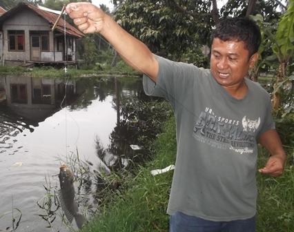 Seorang Penduduk Tarogong Kaler, Garut, Memenuhi Kebutuhan Gizi Keluarga Dengan Memancing Jenis Ikan Nila di Kolam Miliknya, Sabtu (28/11-2015) Sore.