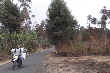 Sepeda motor sarat angkutan sayur-mayur turun gunung memenuhi kebutuhan pasar-pasar tradisional.