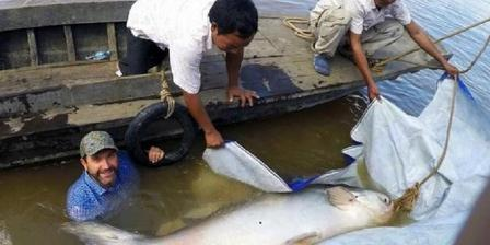 Zeb Hogan (kiri) bersama nelayan Kamboja melepaskan kembai ikan lele Mekong raksasa yang tertangkap nelayan di dekan Pnom Penh pada 9 November lalu. (University of Nevada via National Geographic).