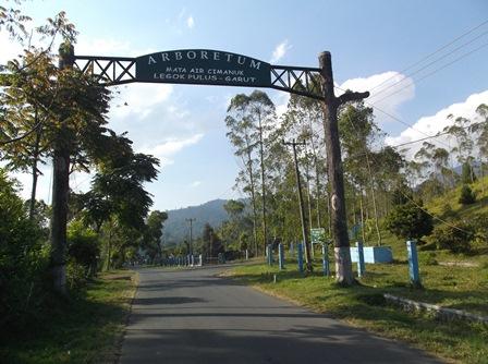 Arboretum di Lebak Pulus Kecamatan Samarang, Garut, Jawa Barat.