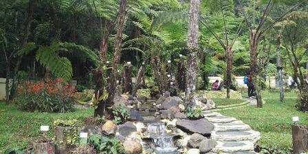 Taman Gesneriaceae di Kebun Raya Cibodas diluncurkan pada Senin (11/4/2016). Taman itu memuat 500 spesimen dan 32 jenis Gesneriaceae dari Indonesia dan luar negeri.