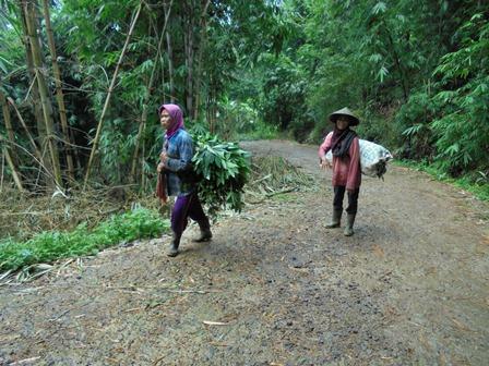 Ilustrasi. Dinamika Denyut Nadi Perekonomian Penduduk Desa di Garut, Jawa Barat.