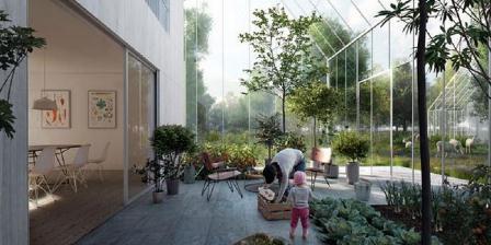 Ilustrasi kota yang akan dibangun oleh ReGen Villages. (Science Alert).