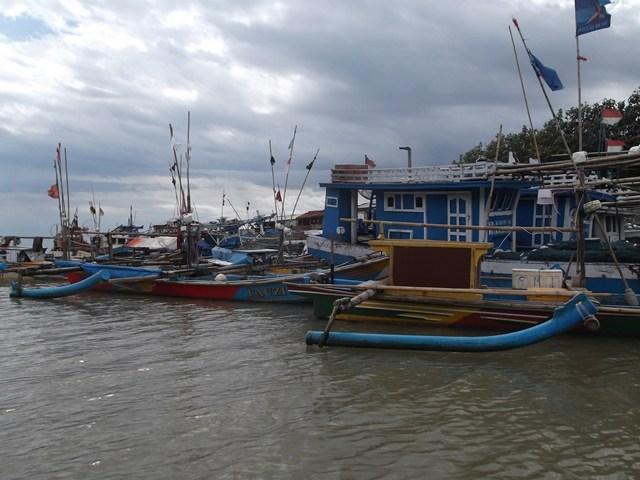 Ilustrasi Perahu Layar Motor (PLM) Cilauteureun Pameungpeuk Garut, Jabar.
