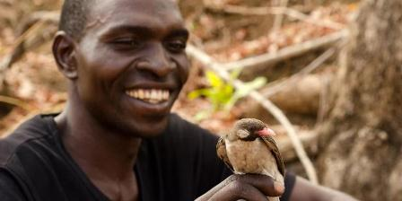 Relasi pemburu madu di Mozambik dan burung honeyguide menjadi bukti pertama kemampuan hewan liar berkomunikasi dengan manusia. (Claire Spottiswoode).
