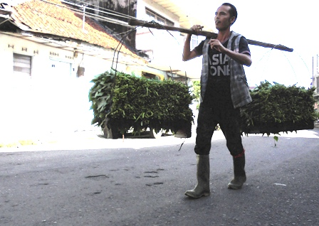 DPRD Bukan Penjual Kangkung, Hanya Bisa Lenggang-lenggang Kangkung.