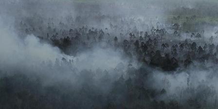 Asap mengepul dari kebakaran hutan yang berbatasan dengan kawasan konsesi di Kabupaten Kepulauan Meranti, Riau, Selasa (15/3/2016). TRIBUN PEKANBARU / MELVINAS PRIANANDA