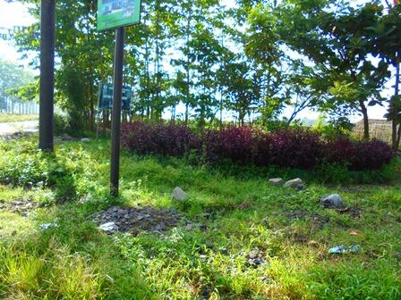 Taman Kota Kubang, Juga Berkondisi Menyedihkan.