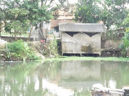 Air Buangan MCK Mengalir dan Dimanfaatkan MCK Lainnya.